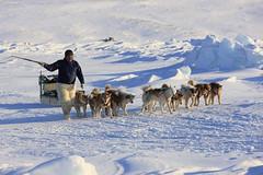 """Inuitjäger mir Hundeschlitten,Qaanaag, Nordgrönland (4) • <a style=""""font-size:0.8em;"""" href=""""http://www.flickr.com/photos/73418017@N07/6747931043/"""" target=""""_blank"""">View on Flickr</a>"""