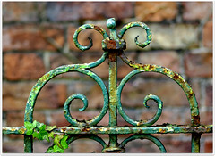 Lovely gate with Ivy (lovestruck.) Tags: uk summer countryside gate with ivy lovely 2011 challengeyouwinner