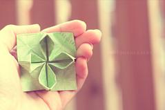 Day 33/366 - Paper Lotus (MPhotography.) Tags: 50mm origami bokeh canon450d beyondbokeh