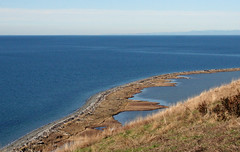The water was sooooo blue today! (Librarianguish) Tags: walk gorgeous bluff sunnyday 212 ebeyslanding unseasonablywarm
