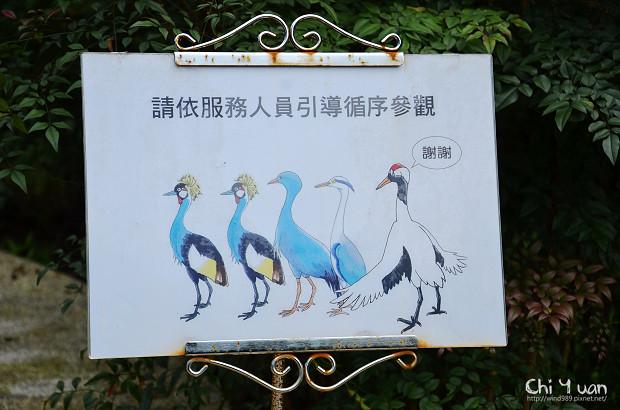 木柵動物園鳥園05.jpg