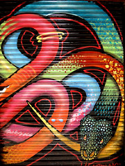 Barcelona city Graffiti 2014 (Marco Braun) Tags: barcelona street city urban streetart color art animal graffiti spain europa europe grafitti snake kunst colored colourful serpent espagne farbig bunt spanien wal tier schlange mucho couleure cataluna katalonien walart multichrom