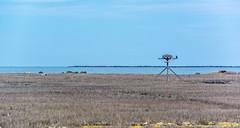 _DSC0530 (johnjmurphyiii) Tags: statepark usa beach spring connecticut madison longislandsound polarization hammonasset polarizedfilter 06443 tamron18270 johnjmurphyiii originalnef