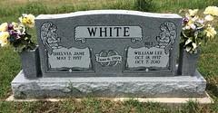 White Headstone (eloisedv) Tags: oklahoma cemetery headstone gravemarker cartercounty lonegrove