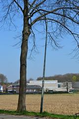 Hellux GAP004 (f O h O) Tags: gap nederland well 004 limburg straatverlichting armatuur hellux wegverlichting gap004