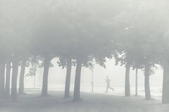 Uppsala, September 14, 2014 (Ulf Bodin) Tags: autumn trees mist tree fog se sweden outdoor running uppsala sverige runner hst trd dimma uppsalaln lpare salabacke canoneos5dmarkiii salabackar canonef70200mmf28lisiiusm fyrislundsgatan