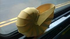 Chambered Nautilus (oschene) Tags: origami nautilus chamberednautilus developable curvedsurface