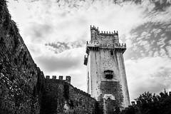 Torre de Menagem (Moiss Gonalves) Tags: white black portugal monument ancient roots kings