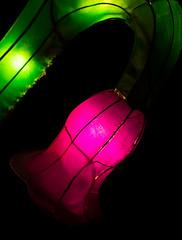 _DSC9695_2 (Elii D.) Tags: light fish flower animal night zoo monkey neon dragons lantern lampion dargon