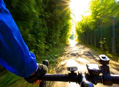 Arakawa Cycling Road (A7design1) Tags: road nature bike speed sunrise dawn cycling tokyo shine path bridgestone earlymorning anchor  saitama arakawa        morningdue