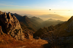 Pomeriggio autunnale (supersky77) Tags: sunset sun alps alpes haze tramonto afternoon sole alpi lombardia lecco resegone lombardy foschia pomeriggio erve pyrrhocoraxpyrrhocorax prealpi gracchi azzoni anawesomeshot rifugioazzoni appennnini