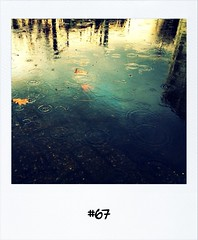 """#Dailypolaroid of 5-12-11 #67 #fb • <a style=""""font-size:0.8em;"""" href=""""http://www.flickr.com/photos/47939785@N05/6479034439/"""" target=""""_blank"""">View on Flickr</a>"""