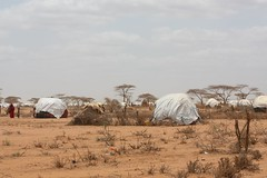 Houses of Dadaab (riy) Tags: kenya refugee drought unhcr somalia famine dadaab