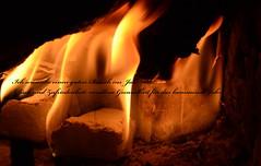 All meinen Flickr Freunden/Innen ein wundervolles Jahr 2012! (Ute Burkowski) Tags: sylvester feuer neujahr kamin 2012 heiss neujahrswnsche
