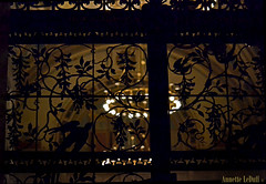 Great Hall Gate from the Balcony (Annette LeDuff) Tags: bird silhouette metal gate pattern interior painted dia backlit grille ironwork ornamentation greathall favorited bss detroitinstituteofarts riveracourt ringoflights metallicobjects silhouettephotography irondetails detalhesemferro photoannetteleduff annetteleduff silhouettegroup artselectedbyadministratorsonly atravésdethrough 12302011 geraldlcampbellsartselectedbyme