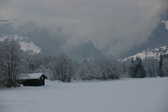 Grindelwald valley in the snow (pixelshoot) Tags: switzerland berneroberland jungfrauregion naturemountainsalps