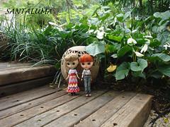Aisha e Iani passeando pelo jardim!!