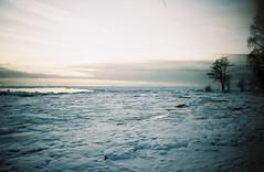 (everymomentrox) Tags: trees sunset sea snow film eveningsky terijoki thegulfoffinland