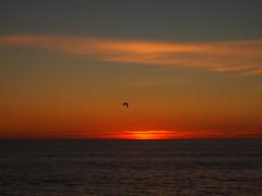 PB Sunset (El Trinidad) Tags: california sunset usa pen pier waves olympus pacificocean pismobeach ep3 eltrinidad olympusep3 ep2ep3