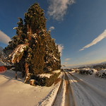 Neve a Fornicchiaia thumbnail