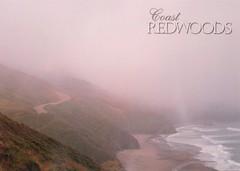US-1532896 SENT (Velma's World) Tags: ocean california fog mail postcard postcrossing pacificocean redwoods usps sent handwritten snailmail lettermo