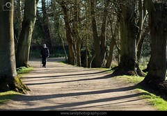 Walking.. (Sanil Photography [800K views]) Tags: trees shadow walking alone pattern age oxford oldperson lonelines agedperson sanilphotography flickrandroidapp:filter=none
