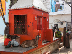 My favorite squere (Dick Verton ( more than 13.000.000 visitors )) Tags: red people india children square temple women asia goat streetlife streetscene varanasi streetview streetshot
