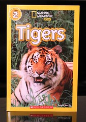 Tigers (Vernon Barford School Library) Tags: new school cats laura animal animals kids cat mammal reading book kid big high library libraries tiger reads books super read paperback national bigcat cover tigers junior covers marsh bookcover pick middle society vernon quick mammals recent geographic bigcats picks qr bookcovers nonfiction paperbacks nationalgeographic barford softcover nationalgeographicsociety quickreads quickread vernonbarford nationalgeographickids softcovers superquickpicks superquickpick 9780545638142