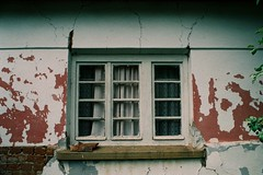 35mm (tokyojuki) Tags: window analog 35mm photography nikkormatel flmphotography