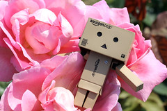 Lakewoods Garden/Canon EOS60D:Canon EF-S60mm F2.8 Macro USM (telenity) Tags: danboard