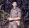 Rangoon Movie Release Date Locked (hollybollynews) Tags: saifalikhan vishalbhardwaj filmrangoon