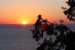 IMG_6956 (sjj62) Tags: sunset seascape doorcounty sunsetting doorcountywi 40d ellisonbaywi ellisonbluffstatenaturalarea