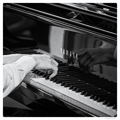 131/366 black white day (tideloon) Tags: blackandwhite reflection square hands piano may player fujifilm pianist entwicklung 2016 blackwhiteday 366dayproject fujifilmxe2 366the2016edition 3662016