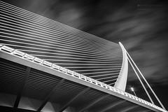 The Harp (alfonstr) Tags: bridge sky bw abstract valencia lines architecture clouds puente pattern geometry arts ciudad structure cielo calatrava nubes minimalism artes bnw ciutat estructura