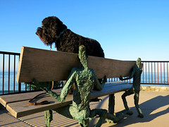 """Support"" - supporting Benni Girl (Bennilover) Tags: ocean sculpture dog dogs sunshine bronze bench oak sitting seascapes view watching earlymorning benches labradoodle benni sculptures lagunabeach louislongi"