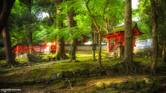 Small Shinto Shrine, Nara Park (Alexander.W.Photography) Tags: 2015 ancient buddhism best culture d610 green honshu japan japon japanese nature nihon nikon nippon red shintoism shinto summer tradition travel travelling view world