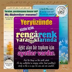Kerim Kur'an - Nahl Suresi 13-17 (Oku Rabbinin Adiyla) Tags: flowers paradise god islam religion bee bible genesis allah islamic verse nahl kuran ayet ayetler ayetullah