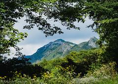 Grandfather Mountain (Kelly Lambert Photography) Tags: milehighswingingbridge nc northcarolina linville biosphere spring mountains blueridgemountains blueridgeparkway grandfathermountain