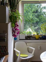 kein Sommer vorm Balkon (coupeuse meier) Tags: sommer duisburg inside