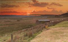 Skye sunset (Astarotte73) Tags: skye portree achachork schiehallion tramonto sunset pecore sheeps silenzio pace silence peace oradorata goldenhour landscape panorama scozia scotland sigma35mmf14art