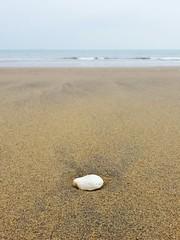 The pebble (Den's Lens 2000) Tags: beach stone coast seaside sand pebble minimalism