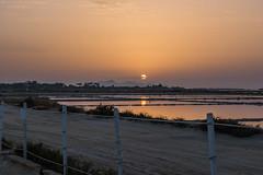 DSC_5319 (Pasquesius) Tags: sunset sea tramonto mare lagoon sicily rosso saline sicilia saltponds marsala stagnone lagunadellostagnone riservanaturaledellostagnone