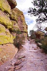 Echo Canyon Trail - Chiricahua National Monument