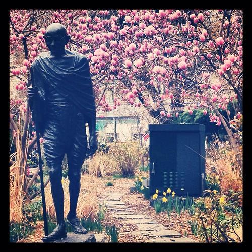 From flickr.com: Gandhi {MID-207425}