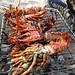 Crayfish Anatomy and Physiology
