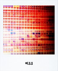 """#DailyPolaroid of 9-2-12 #133 #fb • <a style=""""font-size:0.8em;"""" href=""""http://www.flickr.com/photos/47939785@N05/6863244515/"""" target=""""_blank"""">View on Flickr</a>"""