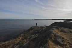 (Mercury dog) Tags: sweden stockholm archipelago nynshamn