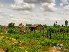 Country Side- Koh Ker.jpg