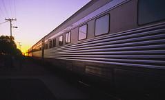 Indian Pacific sunrise, 1990 (NettyA) Tags: film train sunrise 35mm pacific indian cook railway australia scanned sa slides southaustralia 1990