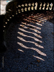balustrade (overthemoon) Tags: light shadow leaves schweiz switzerland suisse lausanne curve svizzera gravel balustrade vaud romandie imagepoetry imagepoésie béthusy
